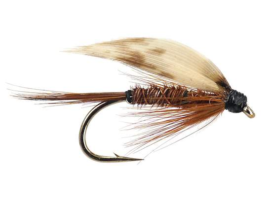 Pheasant Tail Wet