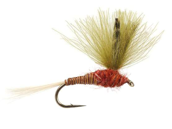 CDC Red Olive Quill 14