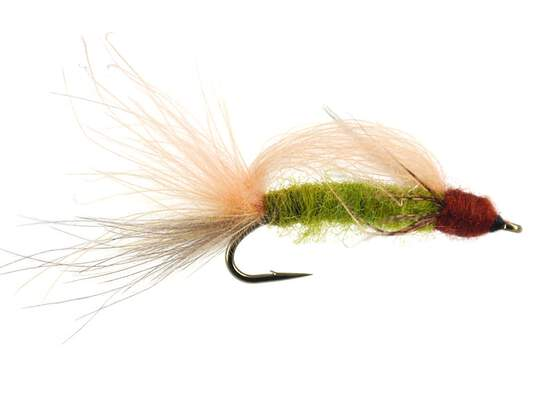 S6 Transition Caddis - Green
