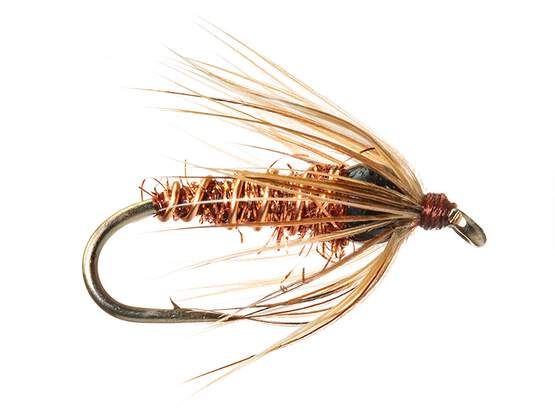 BH Soft Hackle - Pheasant Tail