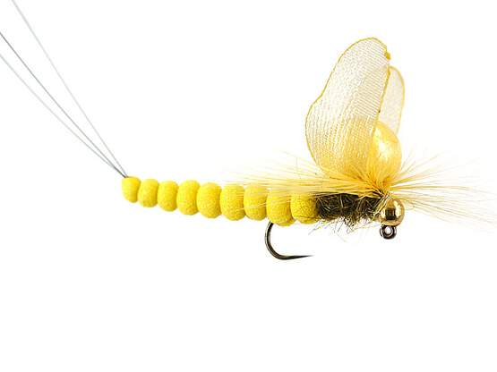 Mayfly Sulphur SPI 8 Barbless