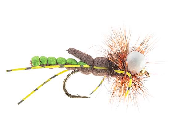 Ales Hopper Green/Brown SPI