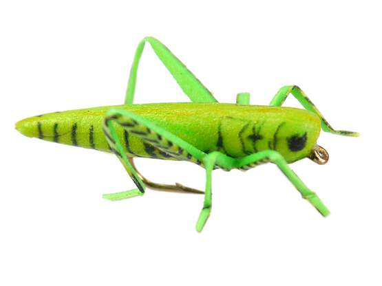 X-true Hopper Green