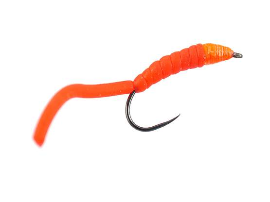 Classic Shape Red Worm BL